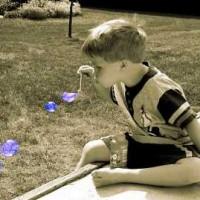 ADHD – ADD Behavior Management